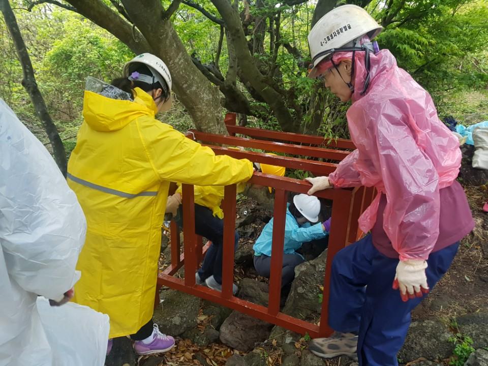 동광리 큰넓궤 입구. 참가자들이 헬멧을 쓰고 천천히 동굴 입구로 들어가고 있다.
