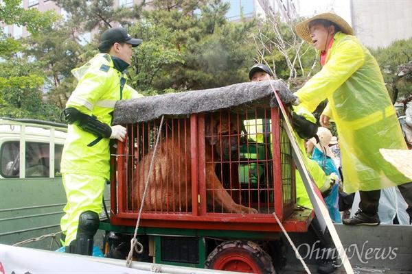집회에 데리고 온 개 놓고 실랑이 벌이는 농민-경찰 개사육 농민들이 16일 오후 서울 여의도 국회 인근에서 열린 생존권 보장 집회에서 트럭에 싣고 온 개를 옮기려고 하자, 경찰이 이를 저지하고 있다.