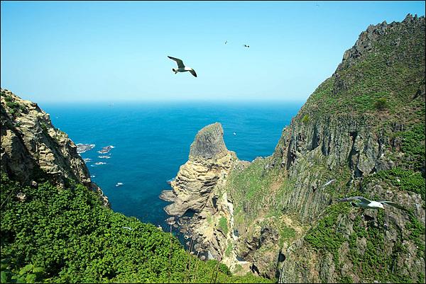 갈매기 아래 탕건봉이 보인다. 탕건봉 왼쪽 바다 가운데 보이는 섬들이 강치들이 살았던 가제바위다. 물골로 내려가는 바위주변에는 식생이 잘 발달해 바다새들의 천국이었다