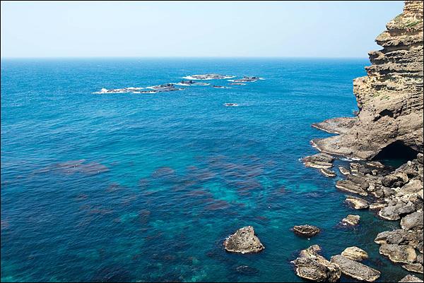 오른쪽에 탕건봉이 보이고 바다 가운데 10여개  보이는 섬이 가제바위로 강치들의 서석처였다. 19세기초 4~5만 마리에 달했던 독도 강치는 일본어부들의  남획으로 1950년대에 멸종되고 말았다.