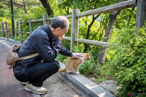 남산공원 산책중인 어르신