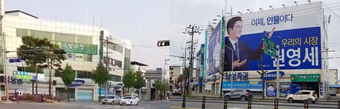 대조되는 사진 지난 4월 25일 찍은 사진(좌)과 5월 21일에 촬영한 사무실 앞 가로수의 모습이 대조되고 있다.