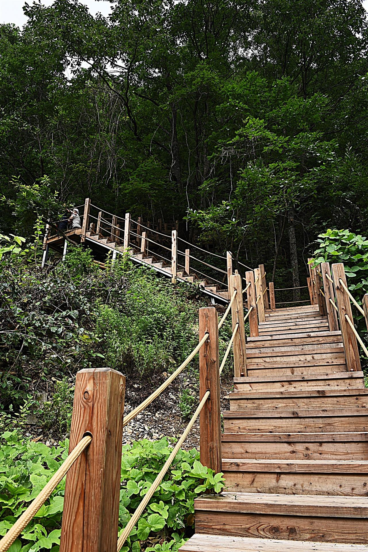376계단  이끼폭포로 가는 마지막 관문, 500m의 내리막길. 계단이 376개다.