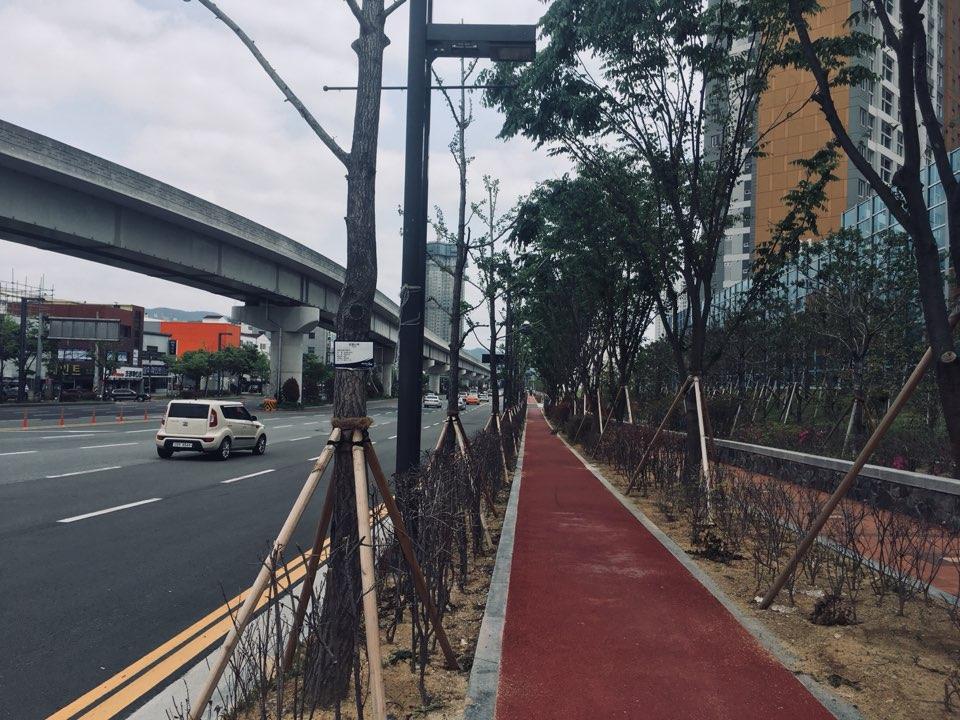 자전거 전용도로 김해에서는 유일하게 제대로 만들어진 자전거 전용도로