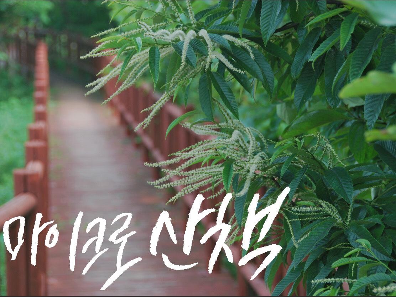 마이크로산책 손글씨 - 김태리