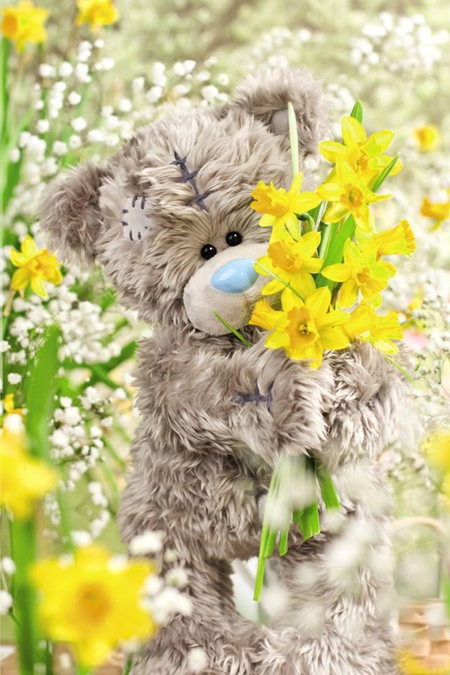 봄을 맞은 미투유.