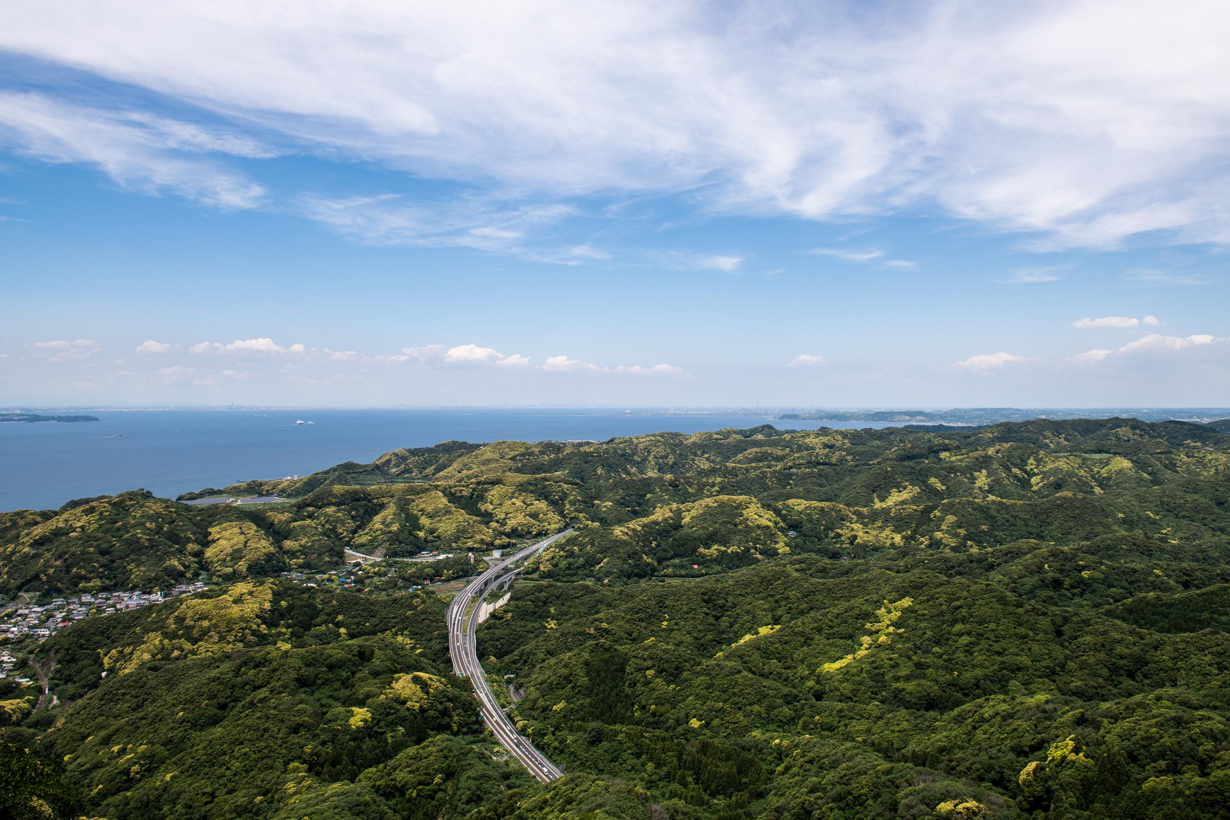 치바현 노코기리산 정상에서 내려다 보이는 울창한 숲. 햇빛 한 줌 들어갈 틈이 없을 것 같이 나무들이 빽빽히 들어서 있다.