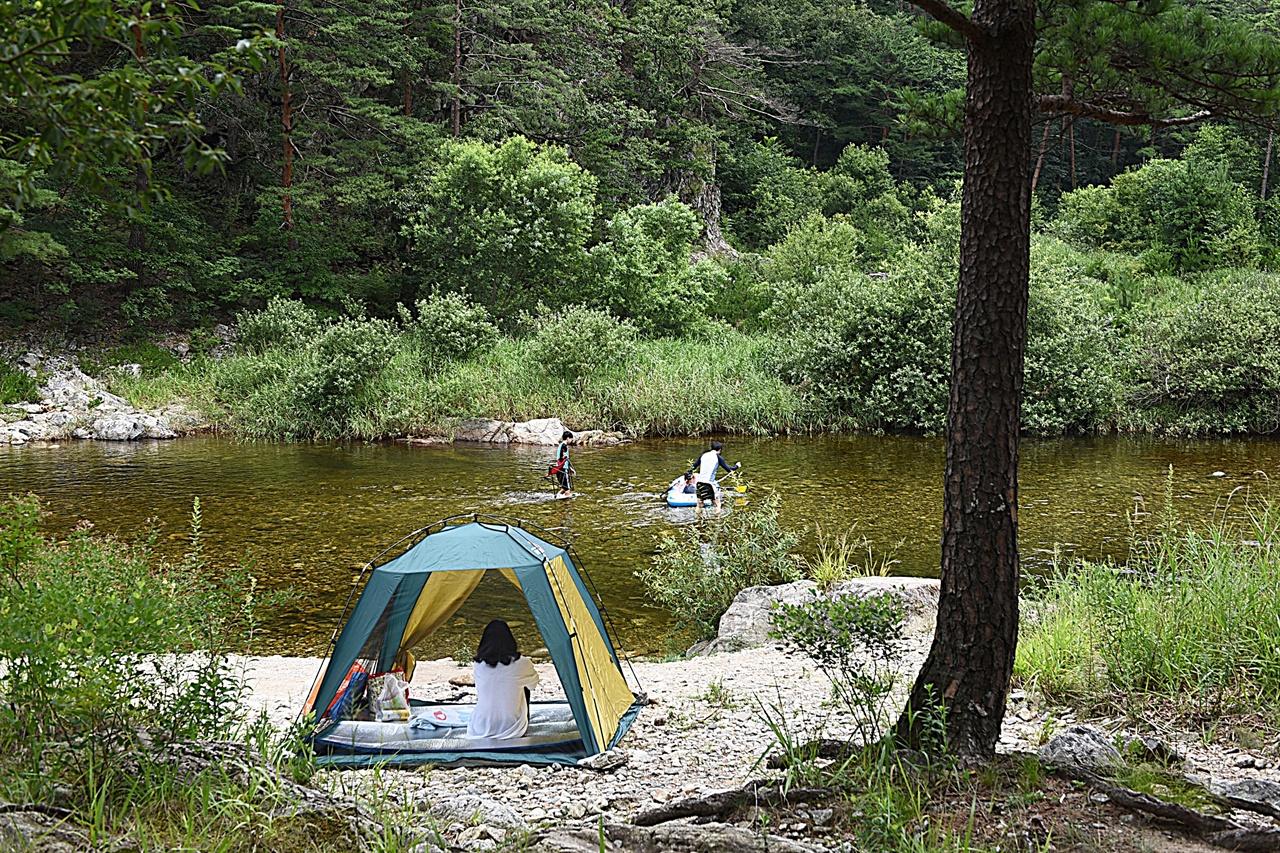 법수치계곡  도로가 깊이 들어가 접근하기 편하고, 수량이 풍부하여 물놀이와 캠핑에 좋은 계곡이다.