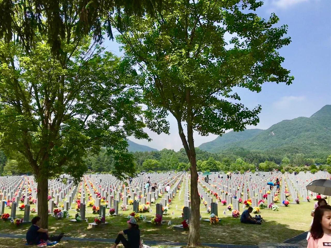 대전 현충원 묘지 현충원 묘지 앞