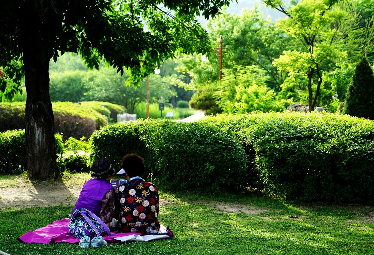 월드컵공원에서의 휴식
