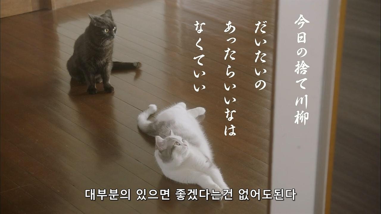 우리 집엔 아무것도 없어 (2016) 일본드라마