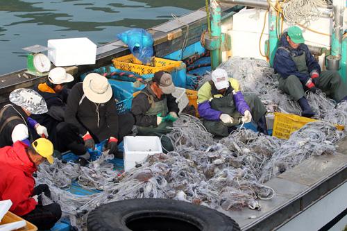 대청도 꽃게 잡이 어선 (자료사진)