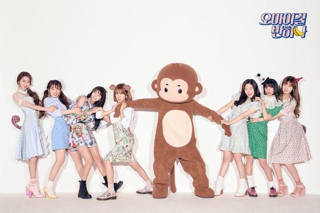 오마이걸은 오는 8월 유닛 '오마이걸 반하나'의 음반 발매를 시작으로 본격적인 일본 활동에 펼칠 예정이다.