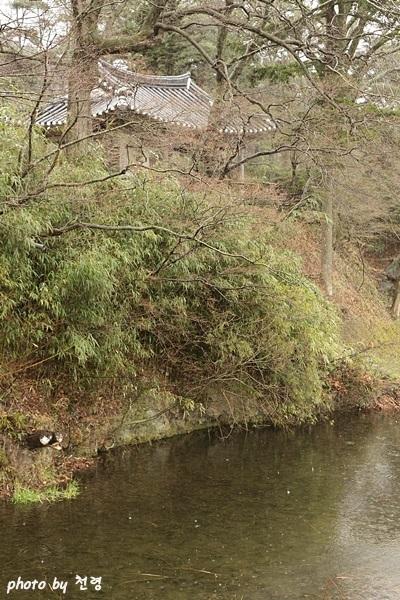 임대정 비구를 통해 상지의 물이 아래 연못으로 힘차게 떨어진다.