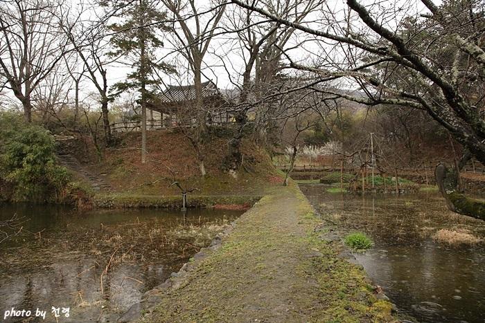 임대정 하지의 두 연못은 반달 모양과 둥근 원 형태의 자유로운 곡지(曲池)이다.