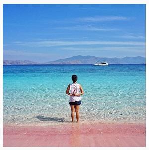 분홍 모래와 에메랄드빛 해변이 아름다운 핑크 비치.