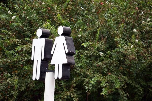 인터섹스는 신체적인 몇몇 특징을 통해 여성 또는 남성을 나누는 성별이분법으로는 설명할 수 없는 사람들이다.