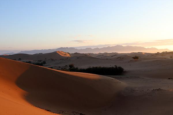 미니고비의 사막 모습. 이곳은 고운모래지만 고비사막의 모래는 우리의 예상을 벗어난 거친모래였다