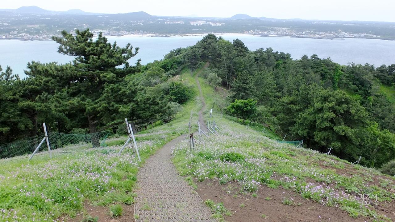 상쾌한 바람, 풍광좋은 비양봉 산책.