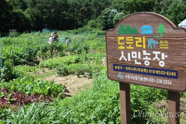 학생들의 교육장소, 도토리 농장.