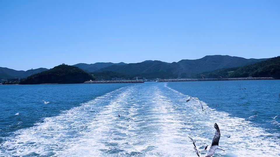 바다와 갈매기 위도로 들어가는 배를 따라 새우과자를 얻어먹기 위해 갈매기들이 모여들었다