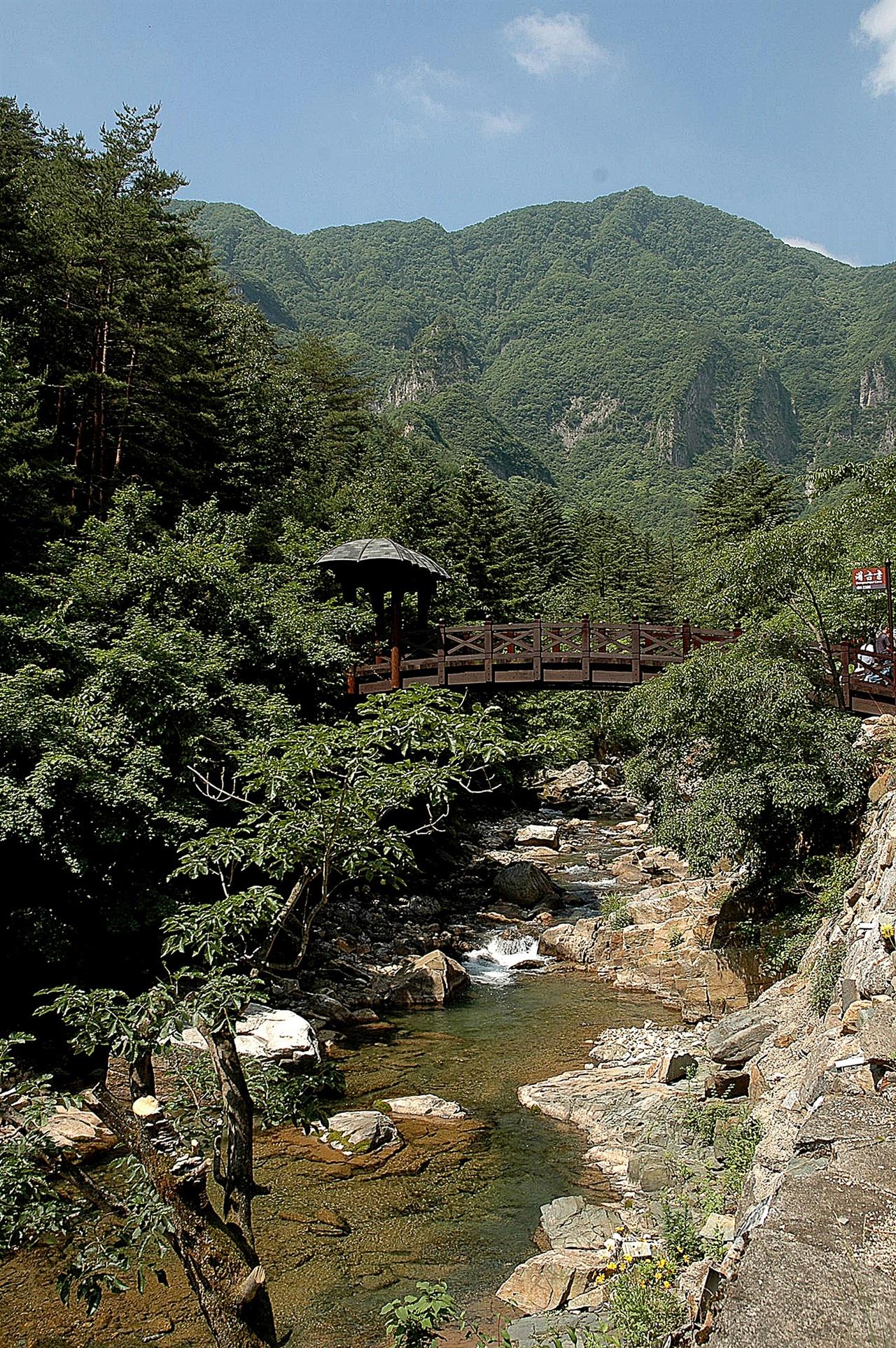 대금굴 입구  계곡을 가로지르는 다리를 건너 조금 걸어가면 대금굴 모노레일 타는 곳이 나온다.