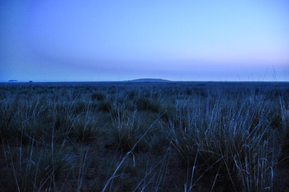 여명이 밝아오는 초원의 새벽. 주변은 온통 새소리 바람소리뿐이었다.