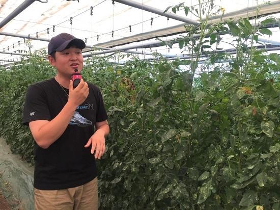 이재휘 씨가 자신이 기른 유기농 토마토에 대해 설명하고 있다.