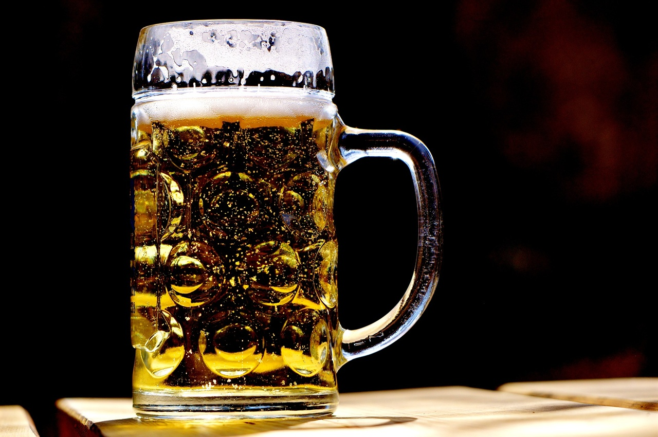맥주 사진 맥주 사진