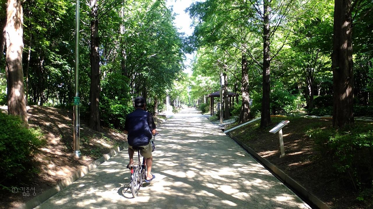 도심속 청정 숲길 중앙완충녹지대.