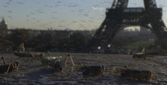 메뚜기 떼가 습격한 에펠탑의 모습 온난화로 인한 각종 곤충 떼의 습격과 병충해를 경고한다.