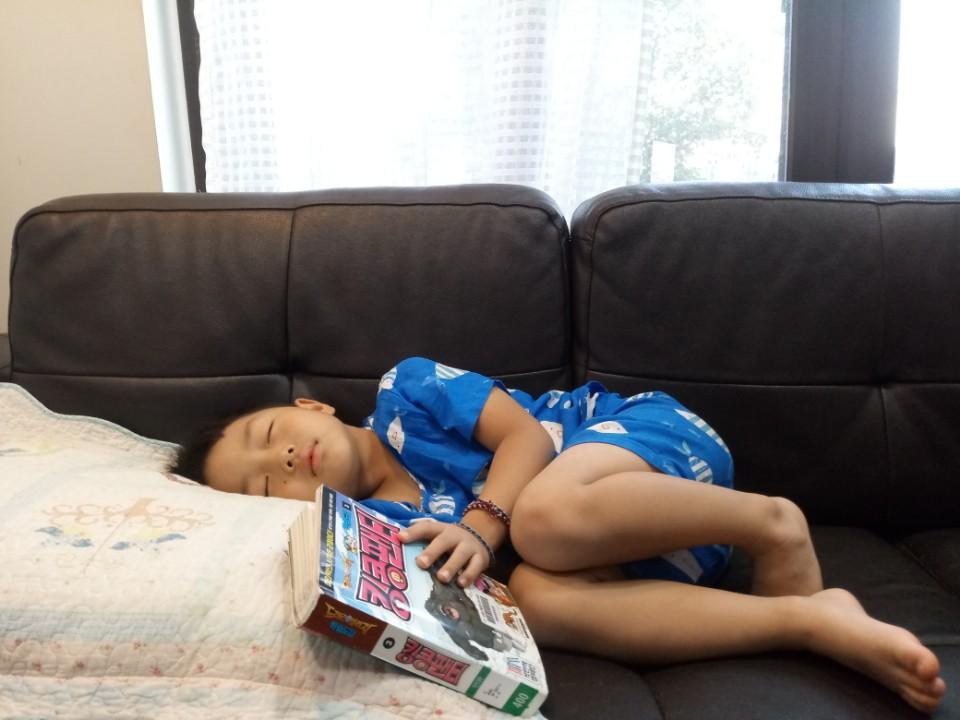 막둥이의 독서 저렇게 두꺼운 책을 보다니, 막둥이까지 다 컸다. (아직 글을 몰라 그림만 본다는게 함정이지만, 그마저도 보다 잠드는 게 주제이지만 ^-^)