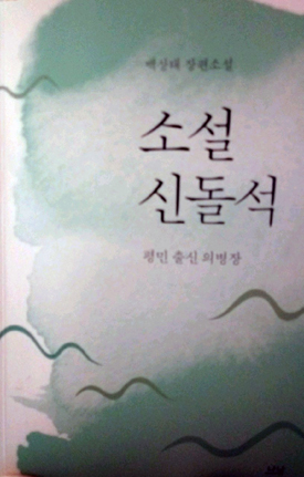 <소설 신돌석>의 표지
