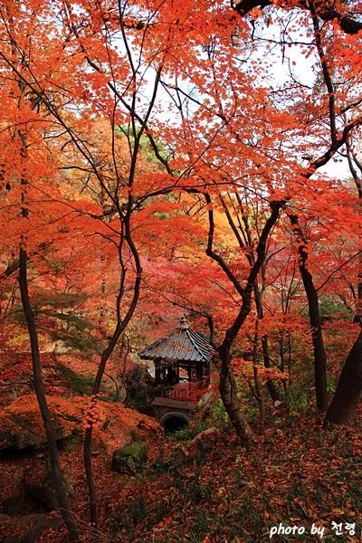 유수성중관풍루 석파정에서 가장 깊숙한 공간에 있는 중국풍의 건물로 가을 단풍이 특히 아름답다.