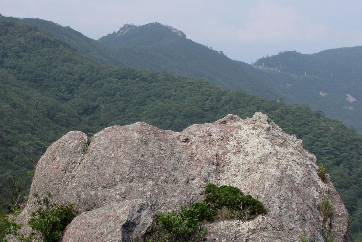남망산 산등성이에 누워 해바라기를 하는 바위. 언뜻 만화 속 주인공 같기도 하고, 동자승과도 닮았다.