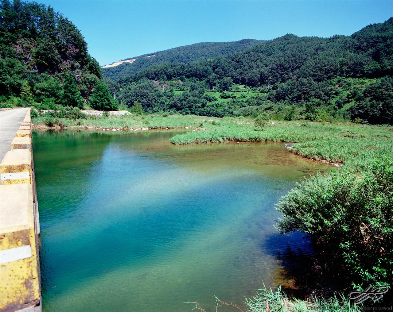 골지천의 맑은 물 (Pro400H)산의 녹음과 물의 초록빛이 깊고도 청량하다.