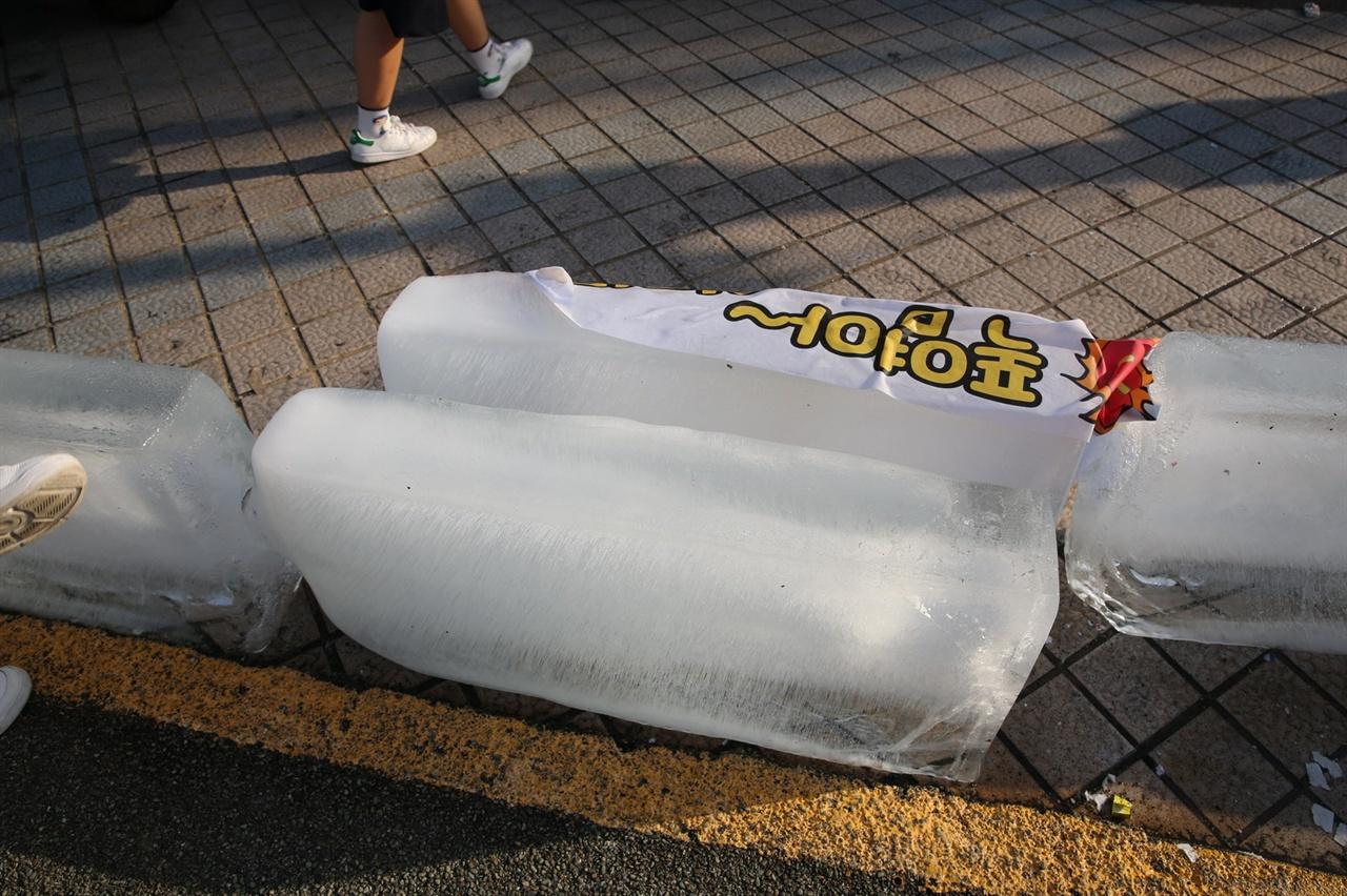 얼음 체험