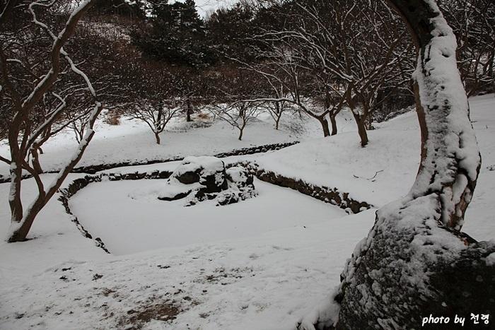 겨울날 위쪽 연못 명옥헌에는 연못이 둘 있는데, 위쪽 연못이 조용히 완상하기에 좋고 아래 연못은 꽃 잔치에 들썩인다.
