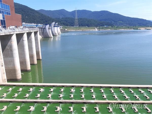 8월 15일 낙동강 창녕함안보 우안 어도의 녹조.