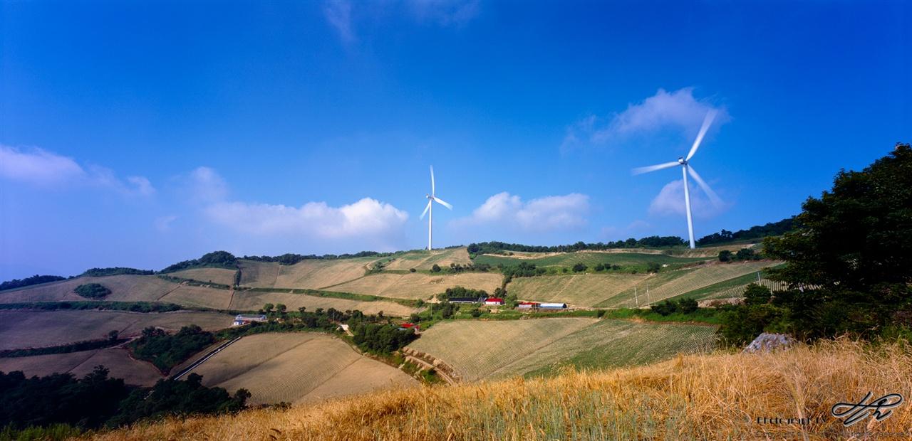 삼색 풍경 (Provia100F)노랑, 초록, 파랑의 풍경에 하얀 붓질이 더해졌다.