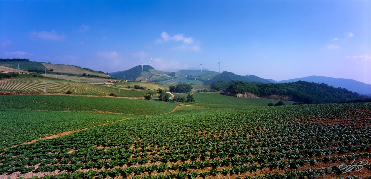 북쪽 방향 (Provia100F)'안반'이라는 어원이 참 잘 어울리는 풍경이다.