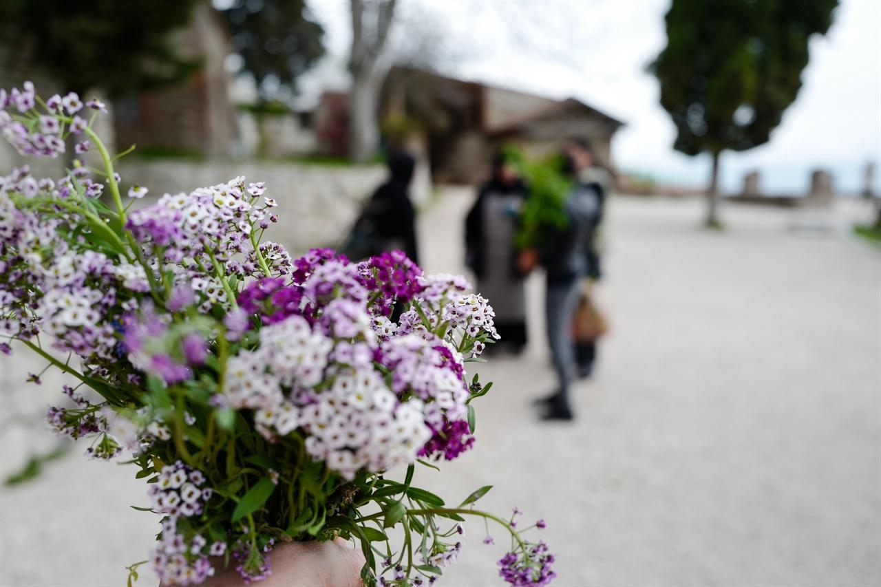 수녀님이 건네준 꽃다발 보드베 수녀님이 만들어준 들꽃 꽃다발