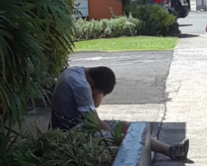 하와이 호놀룰루시 도심에서 쉽게 확인할 수 있는 노숙인.