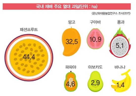 ▲ 국내 재배 주요 열대 과일(이미지=온난화대응농업연구소 2017)