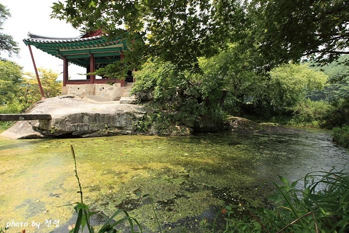 척촉천 정원은 척촉천(擲?泉)이라 불리는 연못을 사이에 두고 충재와 청암정 두 건물이 마주하고 있는 단순한 구성이다.