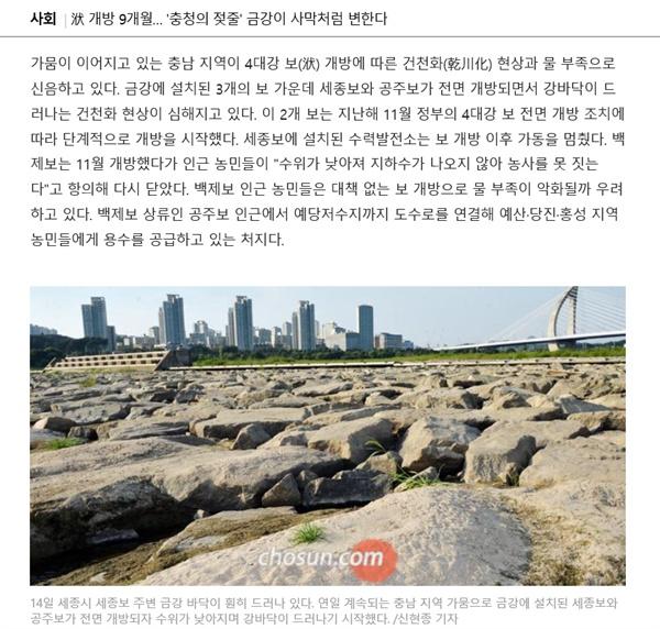 지난 15일 <조선>이 보도한 '洑 개방 9개월... '충청의 젖줄' 금강이 사막처럼 변했다' 기사.