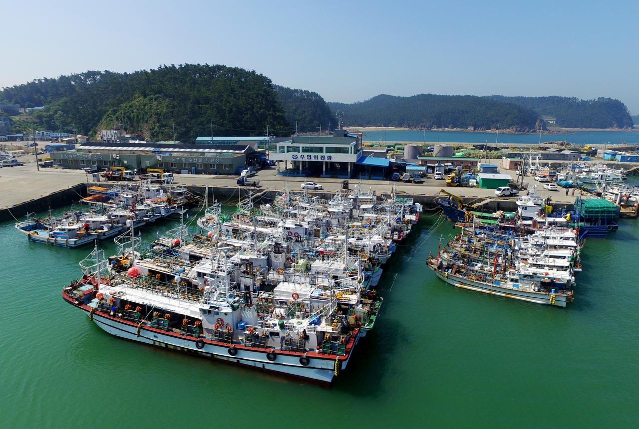 태풍 솔릭 북상에 단단히 결박한 어선들 사진은 22일 충남 태안군 소원면 모항항의 모습으로 어선들끼리 단단히 결박해 태풍에 대비하고 있다.
