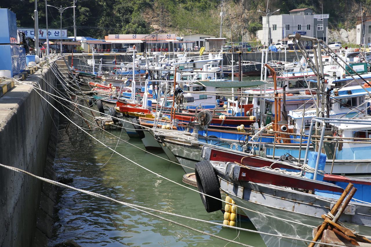단단히 결박된 어선들 태풍 솔릭이 무사히 지나기만을 바라며 어민들이 단단히 어선을 결박한 모습.