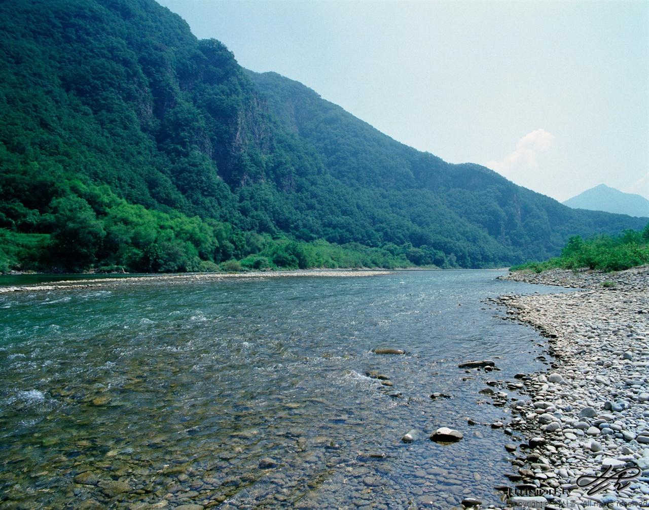 힘차게 흐르는 동강 (6*7중형/Ektar100) 골짜기 사이를 힘차게 흐르고 있는 동강의 모습