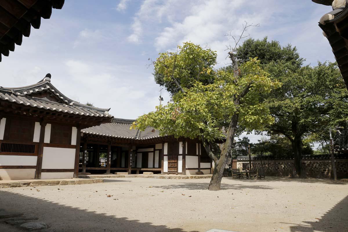 옛 나주목사의 살림집이었던 목사내아. 지은 지 200년이 넘은 옛집이다. 8월 22일 오후 풍경이다.
